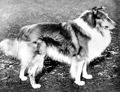 Parbold Piccolo - Born: 1899